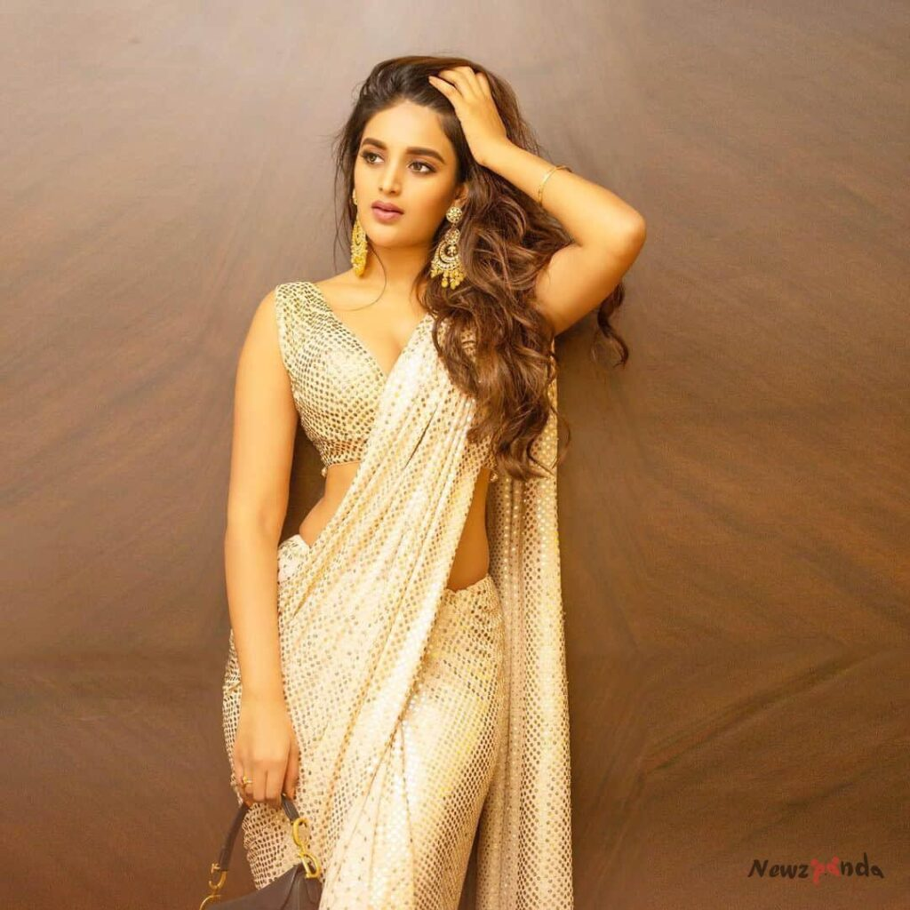 Nidhhi Agerwal Movie List