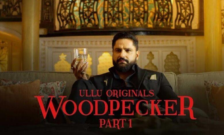 Woodpecker Part 1 Ullu Web Series