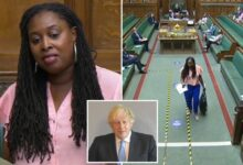 Dawn Butler Biography, Wiki, Thrown Out Of Commons, Husband, Children, Net Worth