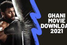 Download Ghani Telugu Movie Jio Rockers 2021
