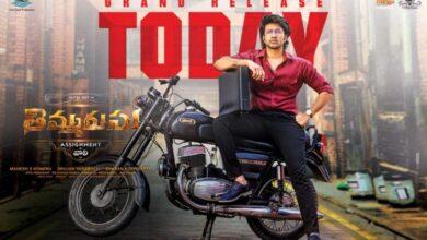 Movie review of Thimmarusu