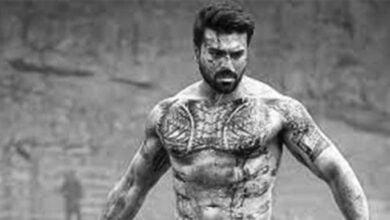 Vinaya Vidheya Ramaa Movie Download leaked