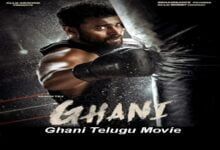 Ghani Download Full Movie 2021 in Hindi HD 360p, 720p