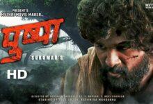 Pushpa Download Full Movie Telegram Filmywap PagalWorld Filmyzilla Movierulz Tamilgun Moviesda