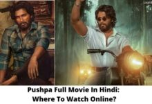 Pushpa Full Movie In Hindi: Where To Watch Online?