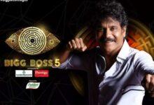 Bigg Boss 5 Telugu Voting