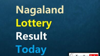 Nagaland State Lottery Result Today 13.9.2021 {Live} 2 PM, 6 PM, 8 PM